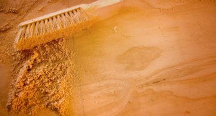 دانستنی هایی راجع به درخت و چوب نارون -  آیا چوب درخت نارون حساسیت زا است؟