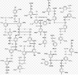 لیگنین چیست