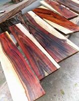 دالبرگیا چوب شیشم یک چوب جالب و عجیب