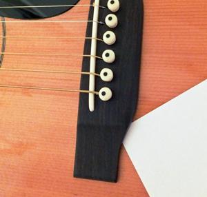 دانستنی هایی راجع به تفاوت درخت های سرو و کاج – استفاد ه از چوب سرو در ساخت گیتار آکوستیک
