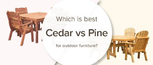 دانستنی هایی راجع به تفاوت درخت های سرو و کاج + انواع چوب