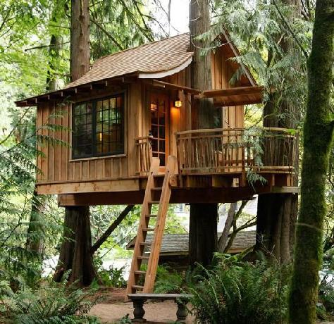 خانه چوبی درختی