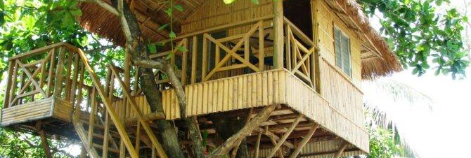 خانه چوبی درختی جالب