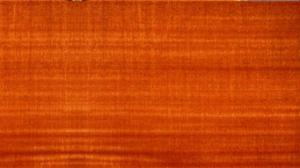 انواع چوب- چوب ماهون آفریقایی