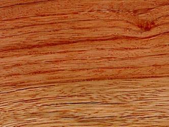 چوب قرمز زبرانو - ایبریا
