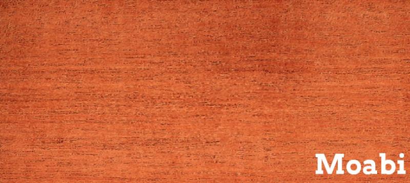 Baillonella toxisperma ، یک درخت گرمسیری؛ محبی (گابن)