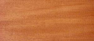 اسکن اصلی دانه چوب ماهون