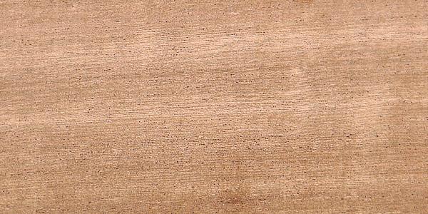 اسکن دانه چوب سایپو