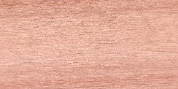 اسکن دانه چوب لیپتوس