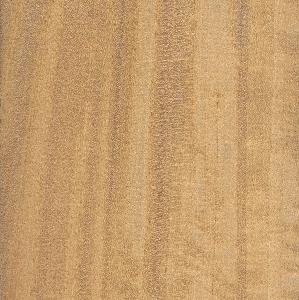 ساتینوود هند شرقی