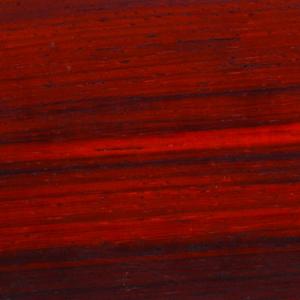 ویژگی ها و مشخصات چوب پادوک