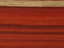چوب پادوک افریقایی