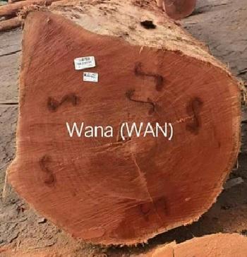 کاربرد چوب در بخشهای مختلف: