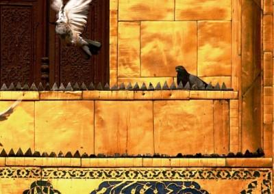 islamic art iran architectur  (55)