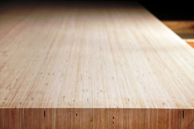 پانل چوب راش آلمانی شرکت پل مایر lvl wood, چوب راش آلمان