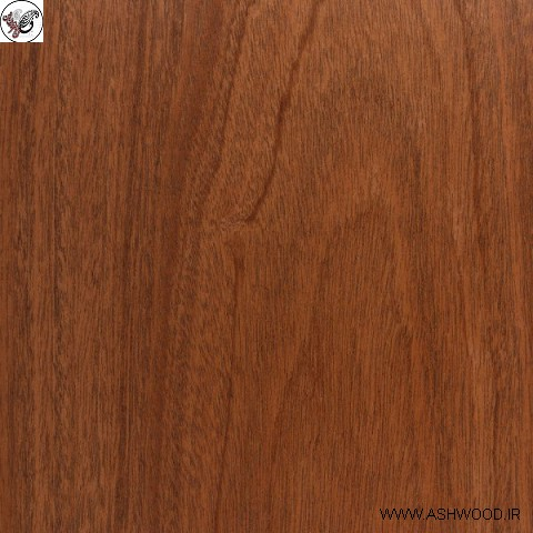 چوب ماهون , فروش چوب ماهون , رنگ چوب ماهون , چوب ماهون گیتار , فروش چوب ماهاگونی , درخت ماهاگونی , ماهون کرمان , چوب ماهیگیری , چوب آکاژو