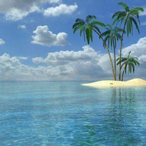 ساحل زیباو عکس یک جزیره با چهار نخل
