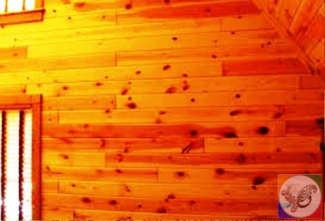 چوب درخت کاج ، tree Pine wood