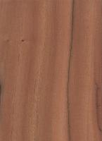 لوچیانو مالو یا چوب تبر شکن