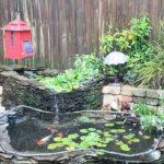 حوض و آکواریوم در حیاط خانه