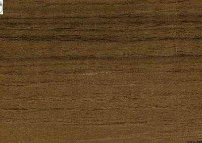 چوب درخت ساج اندونزی