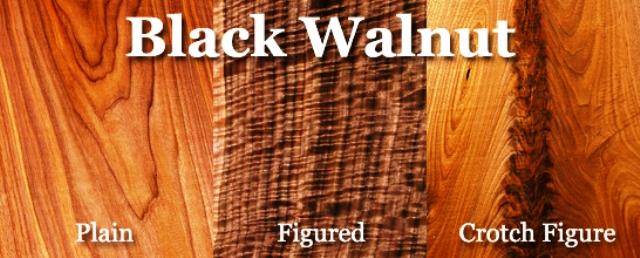 انواع چوب و کاربرد آنها : چوب گردو , قیمت چوب گردو