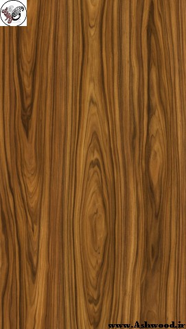 مشخصات انواع چوب , قیمت انواع چوب , ایده عکس انواع چوب , شناخت انواع چوب شگفت انگیز , چوب راش, چوب روسی