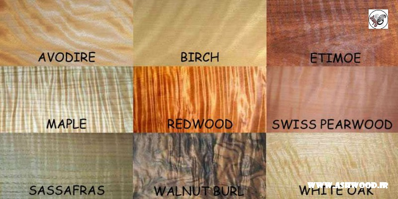 کارشناسی و شناخت چوب در ساخت سازه های متفاوت در نجاری و درودگری