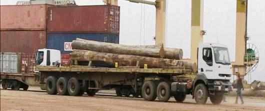 معظل صادرات و غارت چوب جمهوری کنگو