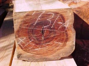 قیمت چوب و تخته در سایت درودگران