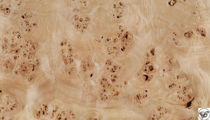 روکش مازل گردو، روکش چوب طبیعی