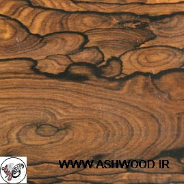 روکش چوب zircote